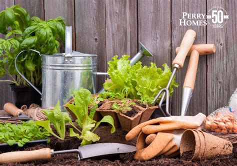 how to start a backyard vegetable garden perry homes