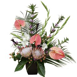 exotic flowers send exotic and tropical flowers online