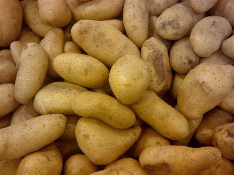 potato thread ffxiah