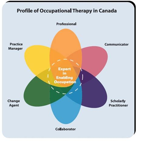 themes of meaning occupational therapy ot program information school of rehabilitation science