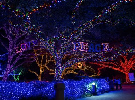 must see holiday light displays just a road trip away from