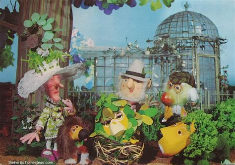 the herbs parsley the tv by michael bond