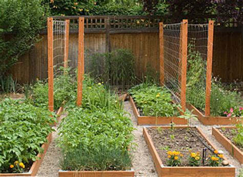 Vegetable Garden Trellis Ideas 7452282602 282eccfa74 Jpg