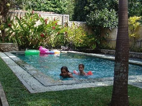 small backyards with inground pools 25 best ideas about small inground pool on pinterest small pool design swimming