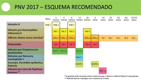 Calendario B Nacional Programa Nacional De Vacina 231 227 O