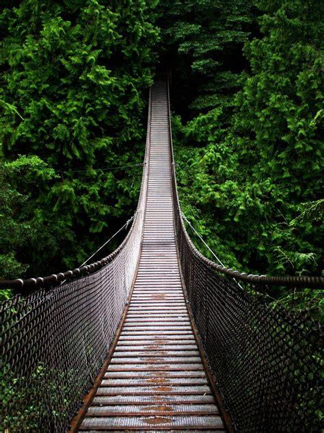 bridge swinging incredible world s scariest swinging bridges would have