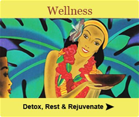 Detox Retreat With Iv by Hawaii Naturopathic Retreat Center Detox Retreat