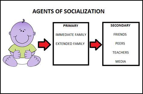 Agents Of Socialization Essay custom essays paper pepsiquincy