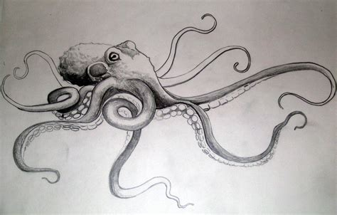 tako octopus by dvampyrelestat on deviantart