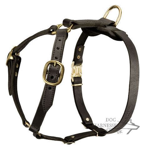 Handmade Harness - leather harness for west siberian laika