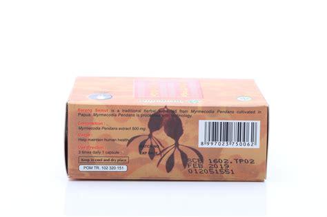 Obat Herbal Sarang Semut sarang semut papua asli obat herbal kanker tumor benjolan