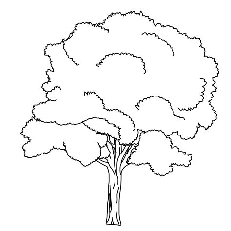 Coloring Page Tree by Coloring Pages Trees And Leaves Free Downloads