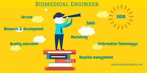 Biomedical Engineer Jobs Search Biomedical Engineer Job   why do biomedical engineers struggle to find a job