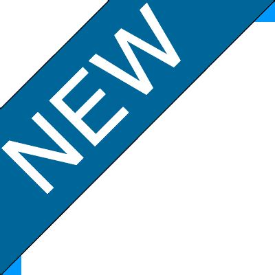 the new image new association of supporting employmentfirst