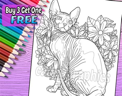 hairless cat coloring page sphynx cat adult coloring book page printable instant