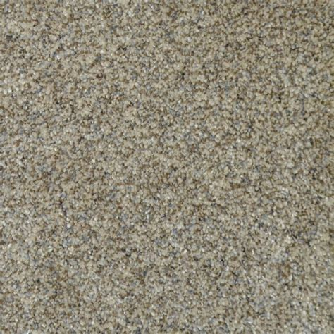Home Decorators Carpet by Home Decorators Collection Carpet Sle All The Best Ii