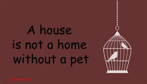 animal quotes sayings images page 33