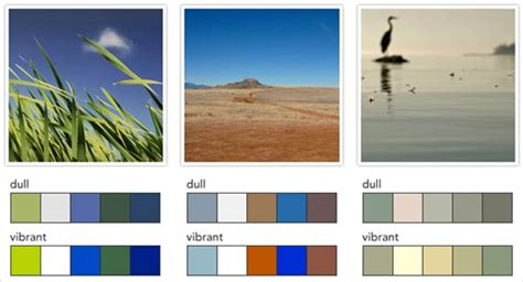 luxury color palette luxury color palette