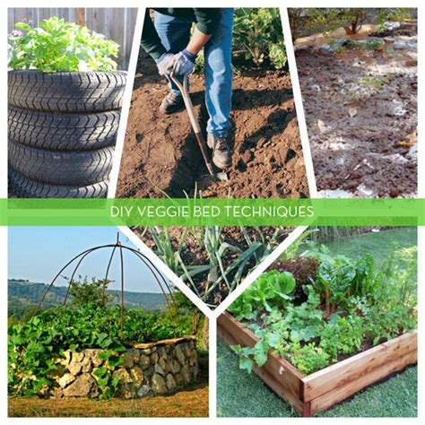 5 Diy Techniques For Creating Productive Vegetable Creating A Vegetable Garden