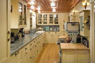 Interior Kitchen Cabinets Antique Kitchen Cabinet At Low Cost My Kitchen Interior