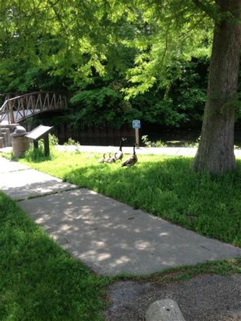 things to do in clinton il veterans point picture of weldon springs state park