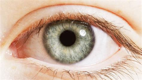 eyeing an eyeball risks high higher cancer risk for those with blue news the