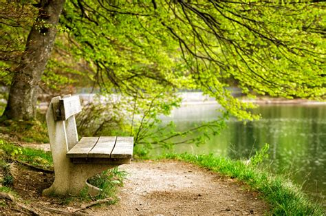 empty bench free empty bench stock photo freeimages com