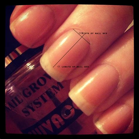 how to make nail beds longer rehab your nails what is a long nail bed bee polished