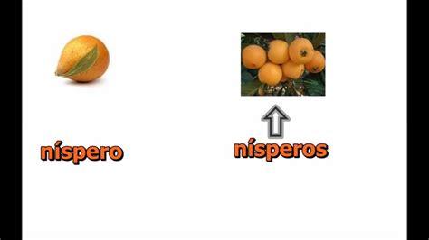 imagenes de verduras que empiecen con la letra e nombres de frutas y vegetales en espa 241 ol castellano youtube