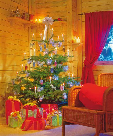 weihnachtsbaum kaufen saisonales selbst de