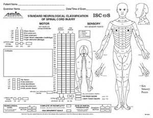 Cranial Nerves Table Neurological Examination American Society Of Regional