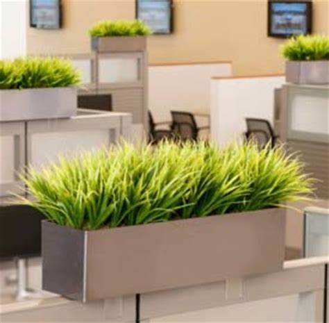 office plant decoration kl artificial office plant viendoraglass com