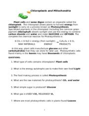 Chloroplasts And Mitochondria Worksheet Answers by Chloroplast Worksheet Worksheets For School Getadating