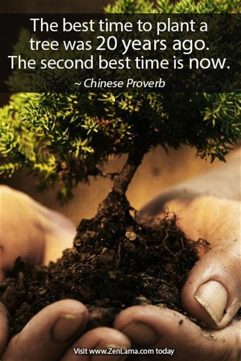 Daily Inspiration Quote Zenlama Com Zenlama When Is The Best Time To Plant A Vegetable Garden