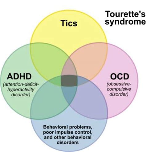 tourette stop your tics by learning what triggers them books eye twitching causes symptoms treatment and remedies