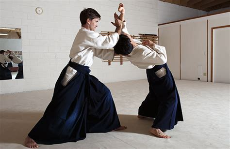list of chinese martial arts wikipedia the free encyclopedia how 10 different martial arts styles kick butt