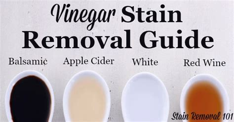 How To Get Wine Out Of Upholstery by Vinegar Stain Removal Guide For Apple Cider Balsamic