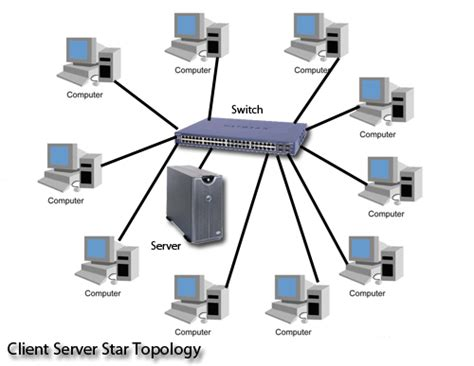 network layout star 1 you are the network administrator for a new company