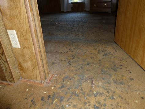 mold under sink particle board moldy particle board sub floors building defect
