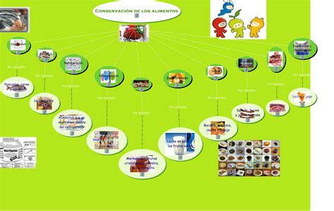 5 tecnicas de conservacion de alimentos metodos de conservacion en los alimentos cual