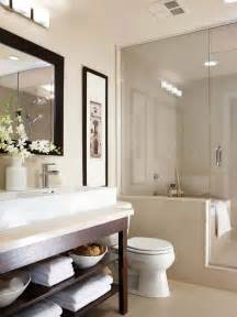 Decorating Ideas For Master Bathrooms by Small Bathroom Design Ideas