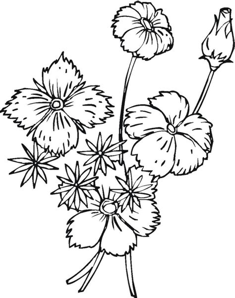 coloring pages of little flowers spring coloring pages little flowers free printable