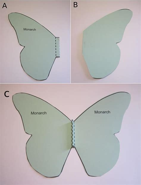 How To Make Butterflies Out Of Paper - butterfly wings using nature to learn about flight