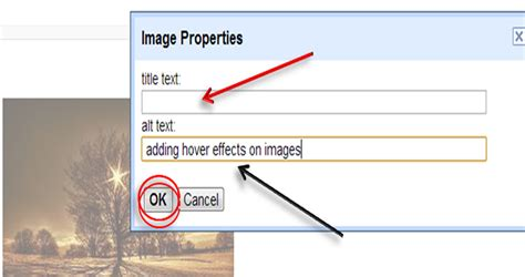 alt image tag adding alt tag to images to increase traffic