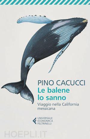 cacucci libreria le balene lo sanno viaggio nella california messicana