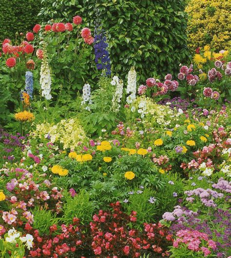 Gardens Of Flowers Flower Garden Ideas Plants Photograph A Garden