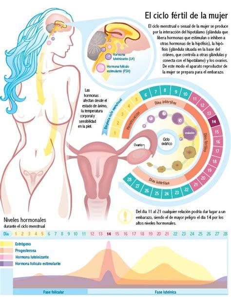 Calendario De Fertilidad De La Mujer Calendario Fertilidad Mujer Para Quedar Embarazada