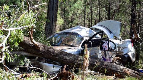 car crashes into tree another taken killed highway closed after car