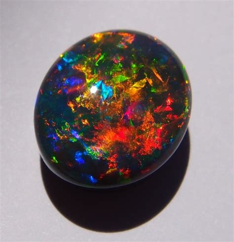 What Is Black Opal Opal Association