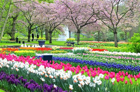Best Flower Garden In The World Best Flower Gardens In Best Flower Gardens In The World